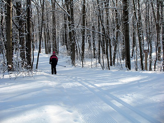 Well groomed trails are a hallmark of the Greenbush Trails